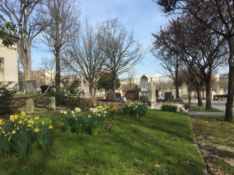 fleurs dans le cimetière